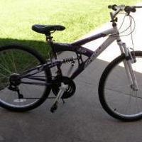Ladies Bike for sale in Plano TX by Garage Sale Showcase Member Frangelico72
