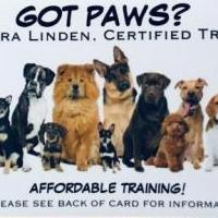 Affordable Private Lesson for Dog Training for sale in Thorntown IN by Garage Sale Showcase member FreshFace42, posted 02/16/2019