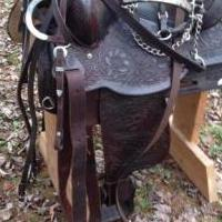Circle Y show saddle for sale in Andreas, West Penn Township PA by Garage Sale Showcase member Aboyle, posted 12/05/2018