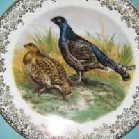 Decorative Collectors Plates for sale in Cape Coral FL by Garage Sale Showcase member akabu2, posted 03/14/2019