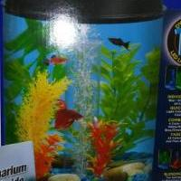360 View Aquarium for sale in Upper Sandusky OH by Garage Sale Showcase member Itsforsale18, posted 12/06/2018