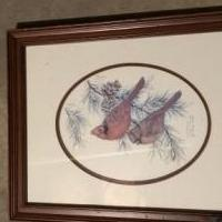Cardinal picture for sale in Newport TN by Garage Sale Showcase member PMartin1246, posted 06/04/2019