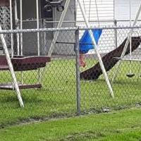 Large swingset for sale in Bucyrus OH by Garage Sale Showcase member Zornesmd58, posted 06/27/2019
