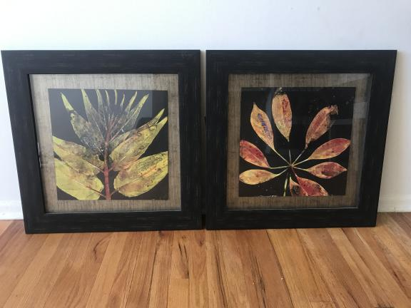 Decorative leaf pictures for sale in Wallington NJ