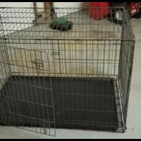 Dog Cage for sale in Middletown NY by Garage Sale Showcase member Moving430, posted 06/10/2020