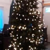 9' lighted juniper Christmas tree for sale in Leelanau County MI by Garage Sale Showcase member Dora1234, posted 11/24/2019