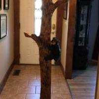 Wood tree coat rack for sale in Newport TN by Garage Sale Showcase member Pmartin46, posted 09/03/2019