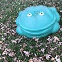 Little Tikes Frog Sandbox for sale in Dahlonega GA by Garage Sale Showcase member Fawn21, posted 11/28/2020