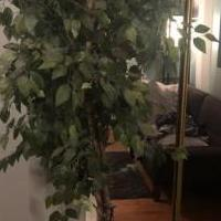 Tree (fake) for sale in Valparaiso IN by Garage Sale Showcase member JeHolder42, posted 07/30/2020