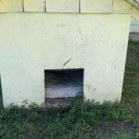 Doghouse for sale in Brownwood TX by Garage Sale Showcase member Bjlgrm, posted 05/20/2020