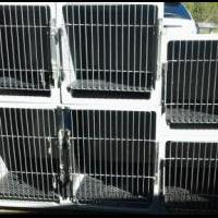 Kennel Cages for Grooming for sale in Washington County NY by Garage Sale Showcase Member Doggroomer1