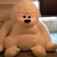 Stuffed Animal: Gorilla for sale in Tiffin OH by Garage Sale Showcase Member Garage Sale George