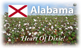 Alabama, Heart of Dixie!